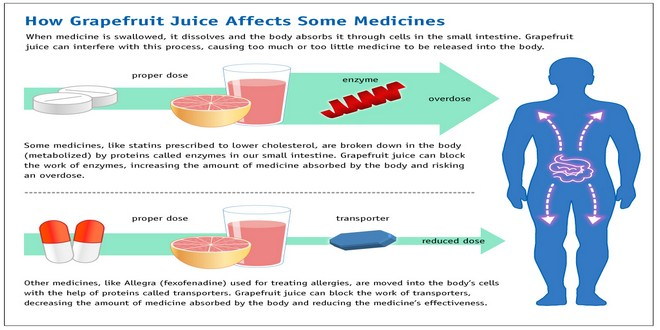 Wiki Juices - How grapefruit juice affects some medications