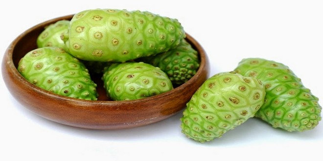 Wiki Juices - Noni fruits in ceramic pot
