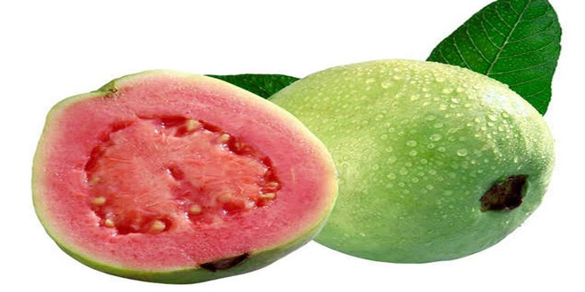 Wiki Juices - Guava fruit
