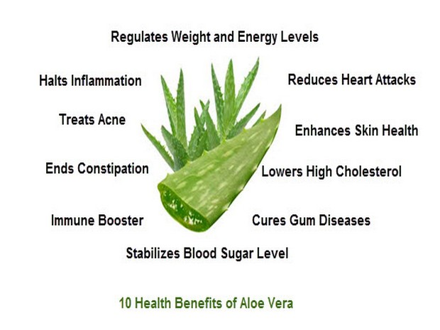 Wiki Juices - Aloe Vera benefits