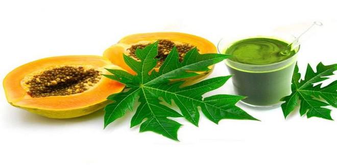 Wiki Juices - Papaya leaves juice