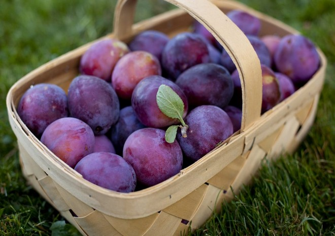 Wiki Juices - Basket with Plums